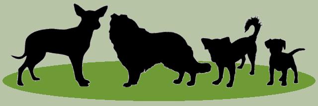 diverse honden vector
